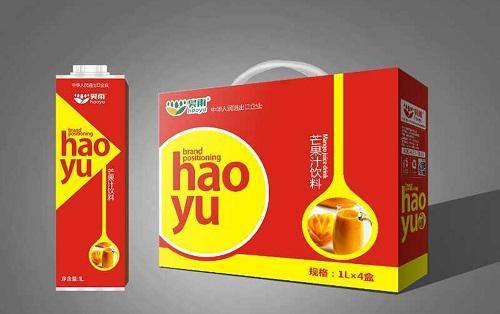 芒果汁代理教你备战春节黄金期!